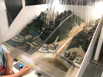 琵琶湖博物館森林保全