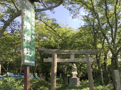 相撲神社 の鳥居