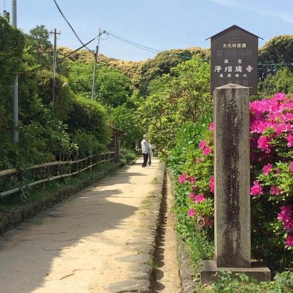 浄瑠璃寺庭園 入口